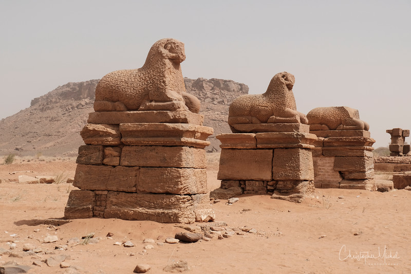 Temple of Amun in Naga.  Sheep guard the temple entrance.  https://en.wikipedia.org/wiki/Naqa