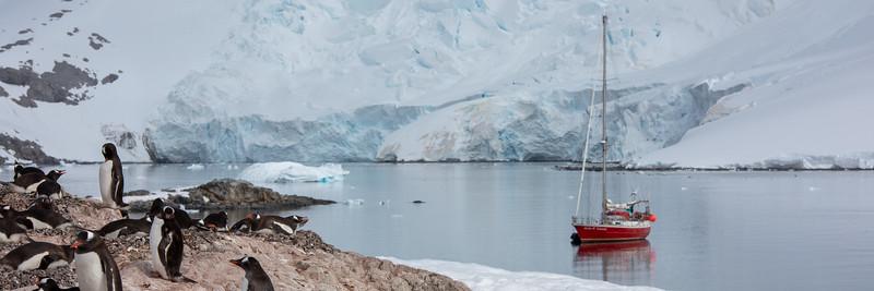 2019_01_Antarktis_03141.jpg