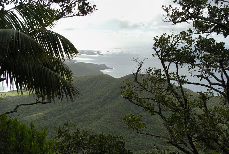 Lord Howe20080509 123834.jpg