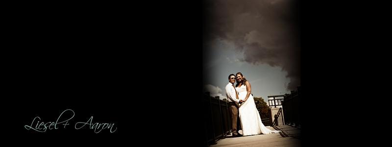 Distelhorst-Hughes Wedding
