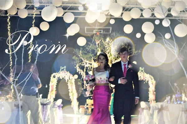 2017 Goreville High School Promenade