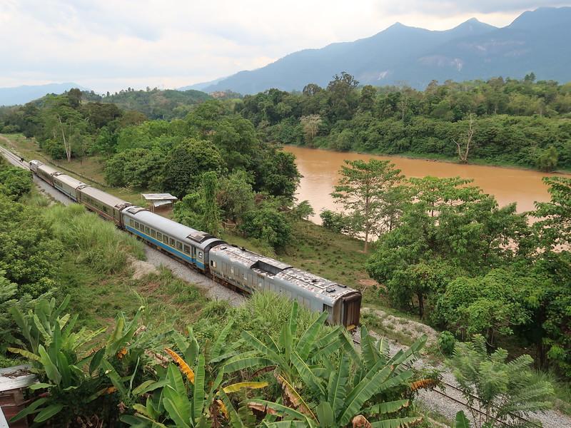 IMG_4903-jungle-train.JPG