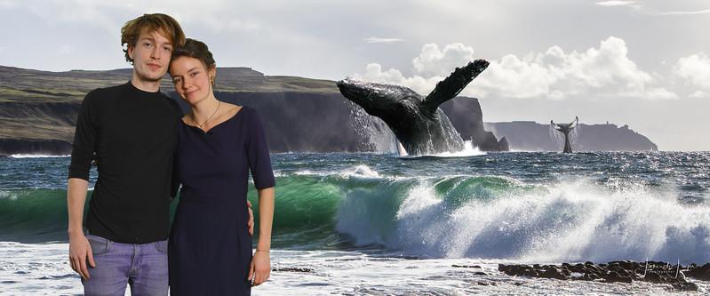 Cliffs of Moher - walvis - Vas en Iris-258
