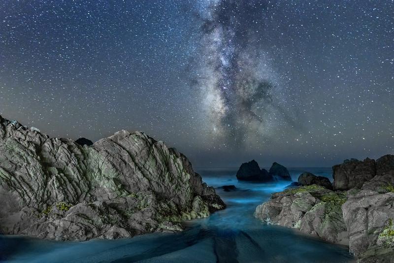 Night Cove, Sea Ranch, California