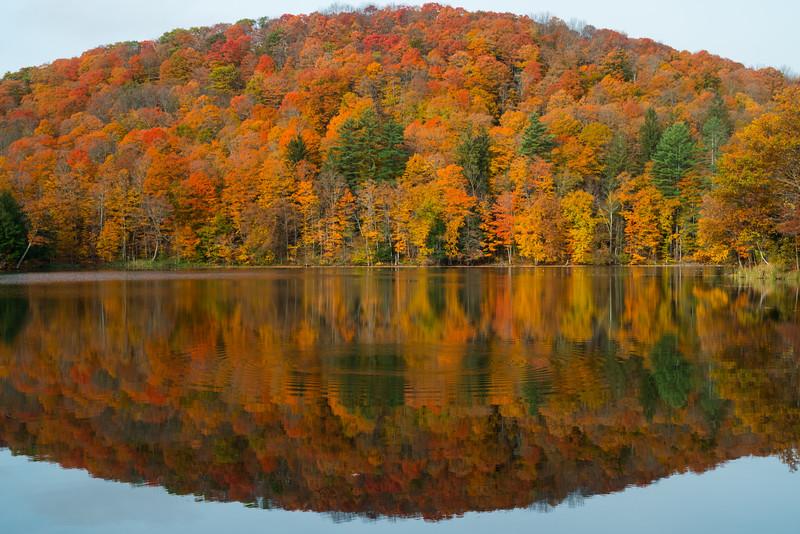 Vermont Fall 2019-10.jpg