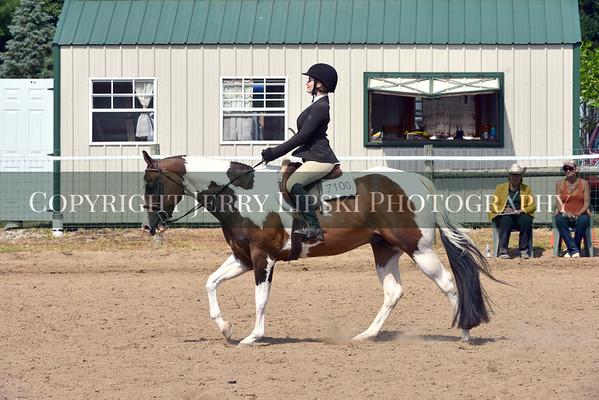 Class 21 ....  Equitation OPEN