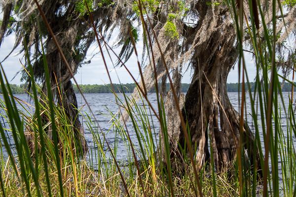 Serpentarium Wetlands Day 2