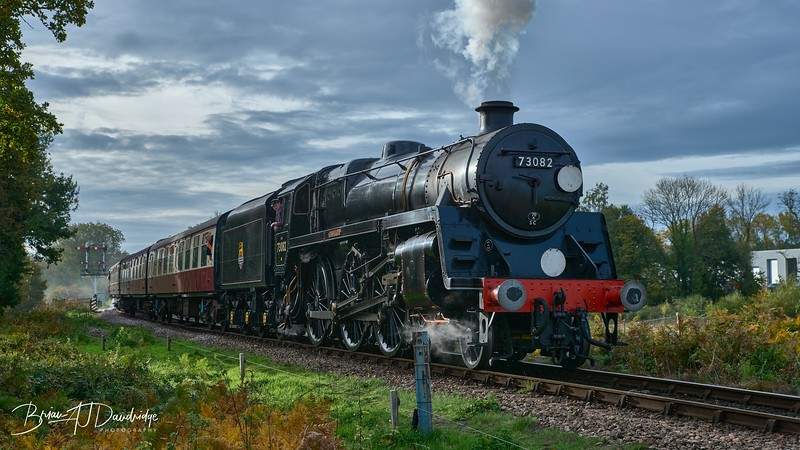 Bluebell Railway - Giants of Steam-87416 - 10-23 am.jpg