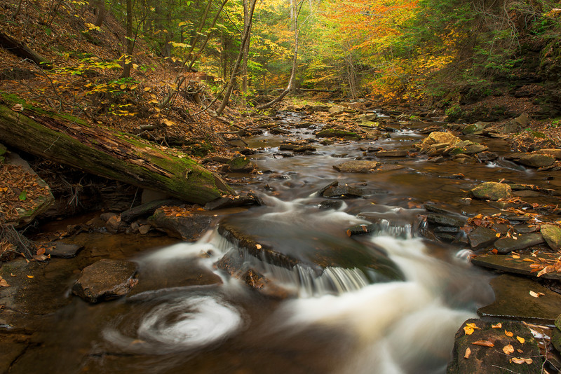 Microswirl Ricketts Glen State Park Autumn Fall Waterfall.jpg