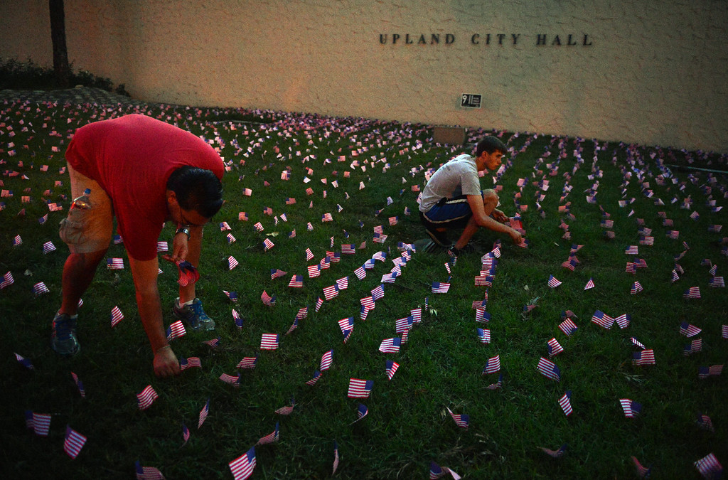 . Volunteers place 2,977 flags outside Upland City Hall in Upland, CA to commemorate the anniversary of 9/11 Wednesday, September 11, 2013. (Jennifer Cappuccio Maher/Inland Valley Daily Bulletin)