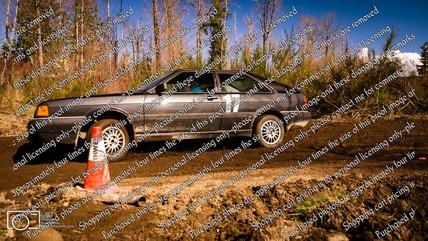 17 Black Audi