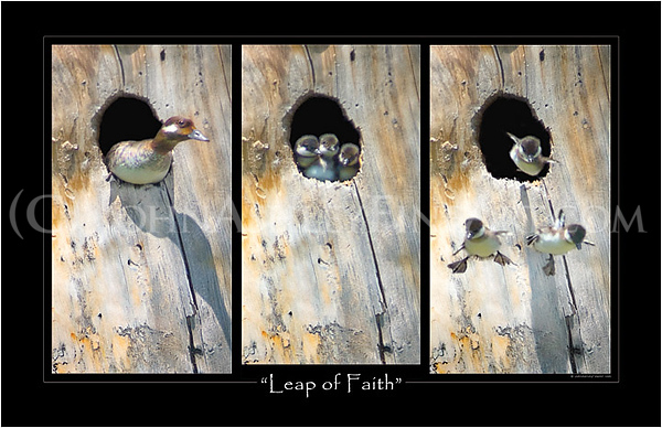 """Leap of Faith"" poster"