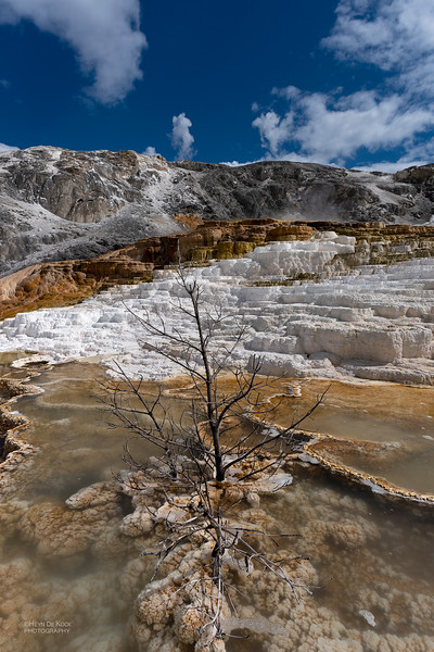 Mammoth Hot Springs, Yellowstone NP, WY, USA May 2018-3.jpg