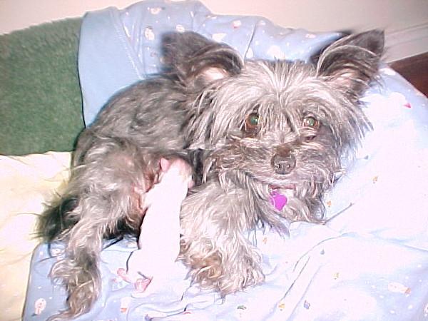 Frieda's babies 01.25.05