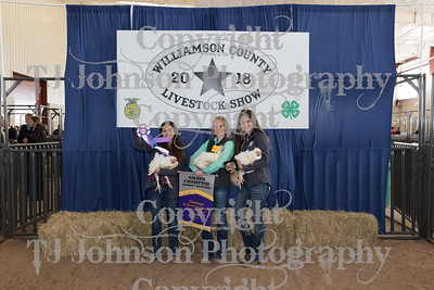 Williamson County Livestock Show