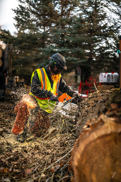 HIDDEN OAK TREE CARE-25.jpg
