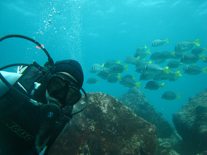 Diving in the Galapagos (336 of 392)