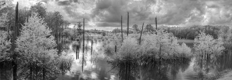 Dead Lakes, Wewahitchka, FL in infrared.