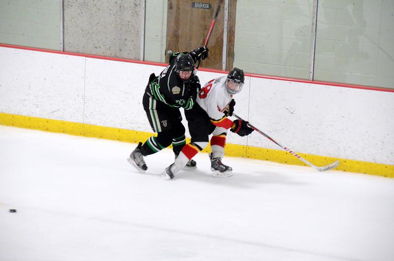 140111 Flames Hockey-105.JPG