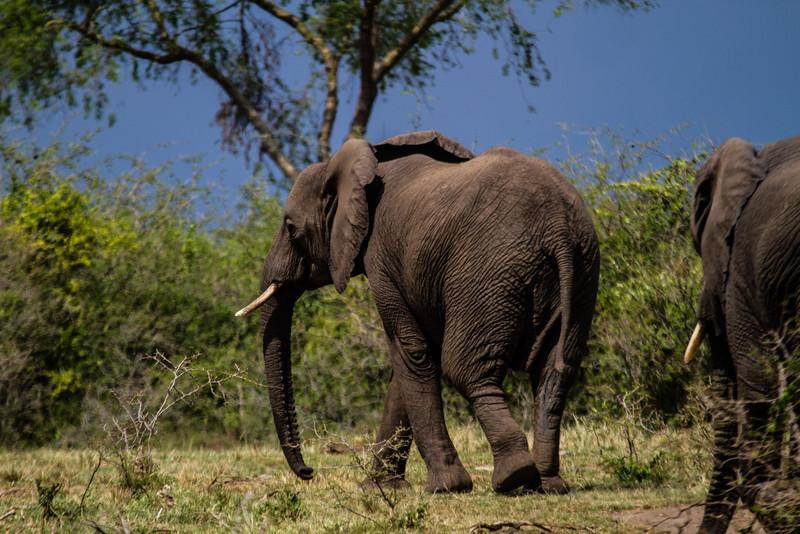 Uganda_GNorton_03-2013-1040.jpg