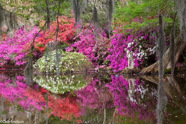 A Spring Celebration at Magnolia Plantation