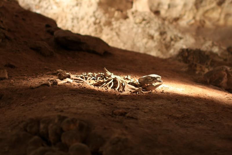 Caves 070.jpg