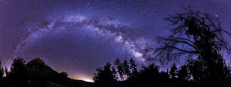 The Milky Way and the Trees - Cuyamaca Rancho State Park