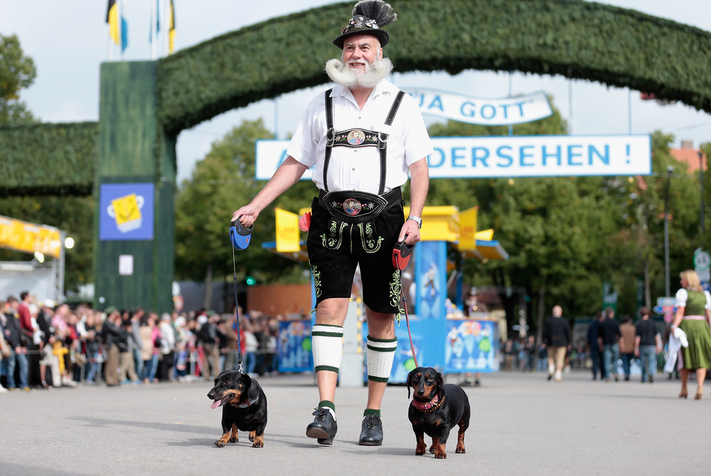 . A Bavarian dressed man arrives with his sausage dogs during the opening parade of the Oktoberfest 2013 beer festival at Theresienwiese on September 21, 2013 in Munich, Germany. The Munich Oktoberfest, which this year will run from September 21 through October 6, is the world\'s largest beer fest and draws millions of visitors.  (Photo by Johannes Simon/Getty Images)