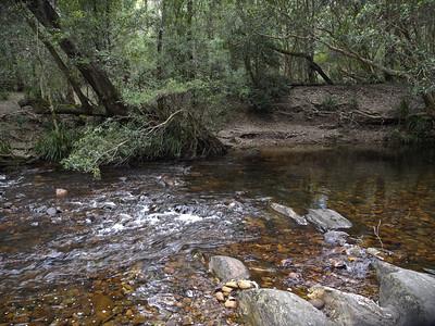 Cooyoyo creek