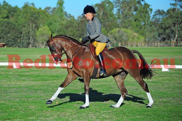2011 05 28 Show Horse Council Classic Debutante Show Saturday