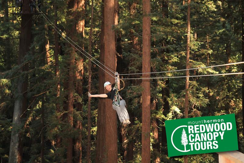 RedwoodEsther2.jpg
