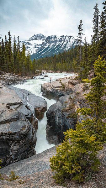Icefields Parkway June 2020