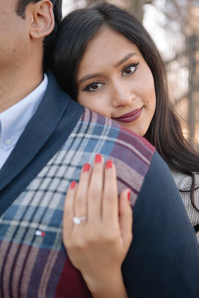 Le Cape Weddings - Gursh and Shelly - Chicago Engagement Photographer -70.jpg