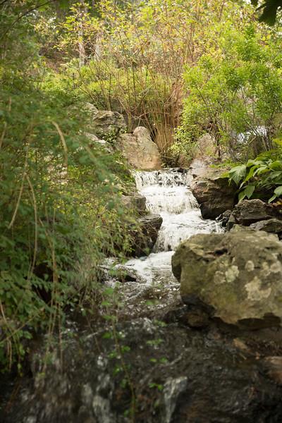 Chicago Botanic Garden 086.jpg