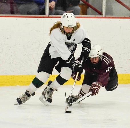 Pot O' Gold Youth Hockey Tournament