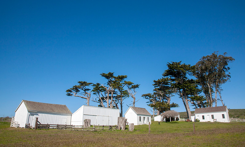 Pierce Point Ranch.jpg