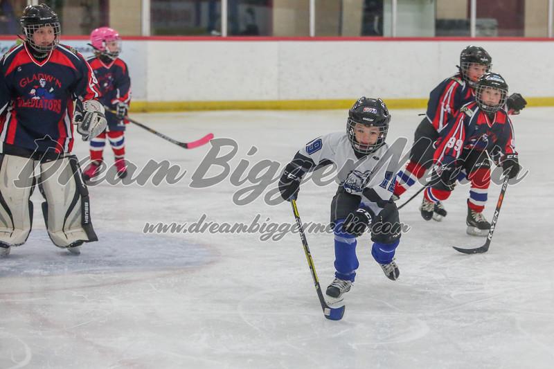 Blizzard Hockey 111719 7185.jpg
