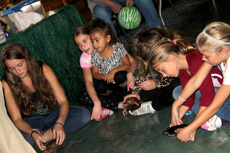 2014 10 11 Brooke Moorea Reptile Party D Reptiles (105)