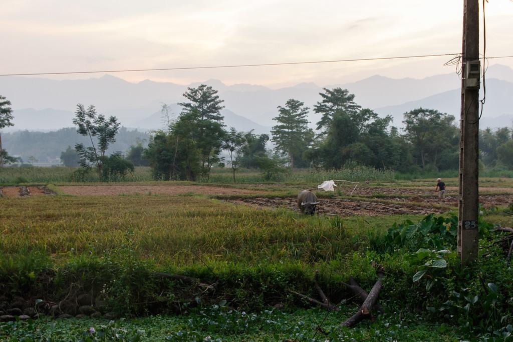 Vietnam Trip 2015 - Friday