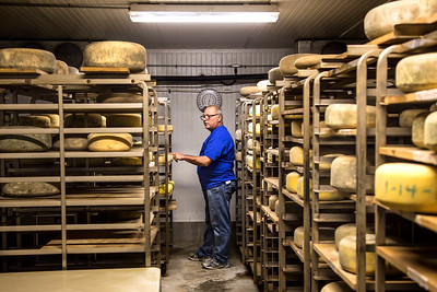 Story and photos on Tim Pedrozo, owner of Pedrozo Dairy & Cheese Co., for the May/June 2016 edition of Edible Sacramento