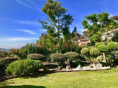 The Tows' San Diego Residence  Outdoor Garden