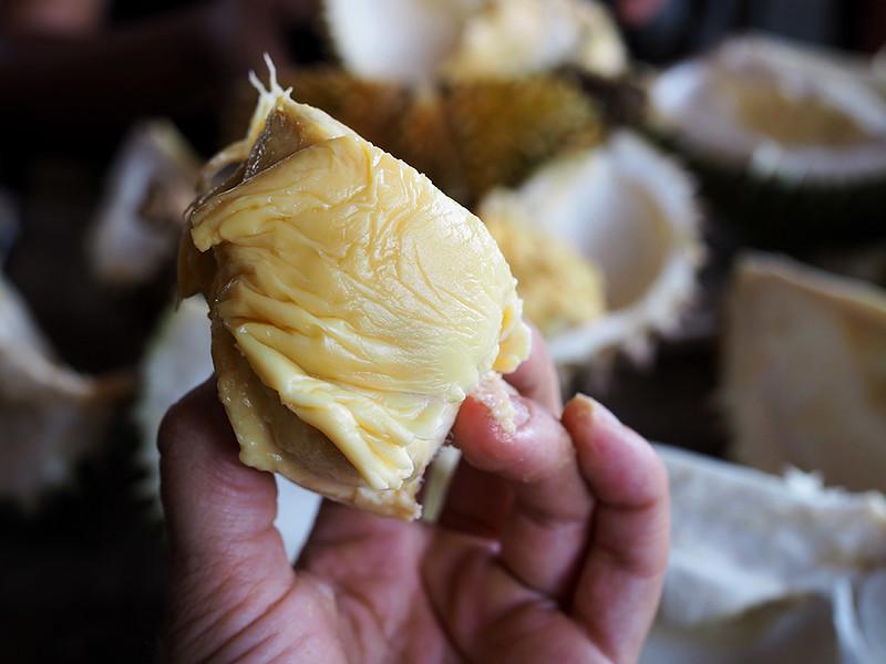yummy-durian.jpg