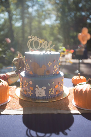 Abrahams Twin's First Birthday Party | 10.15.2016