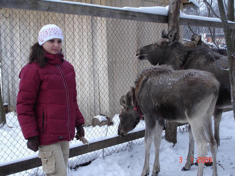 2008-12-31 НГ Кострома 73.JPG