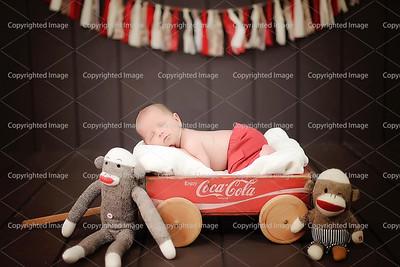 Abbott Newborn 218