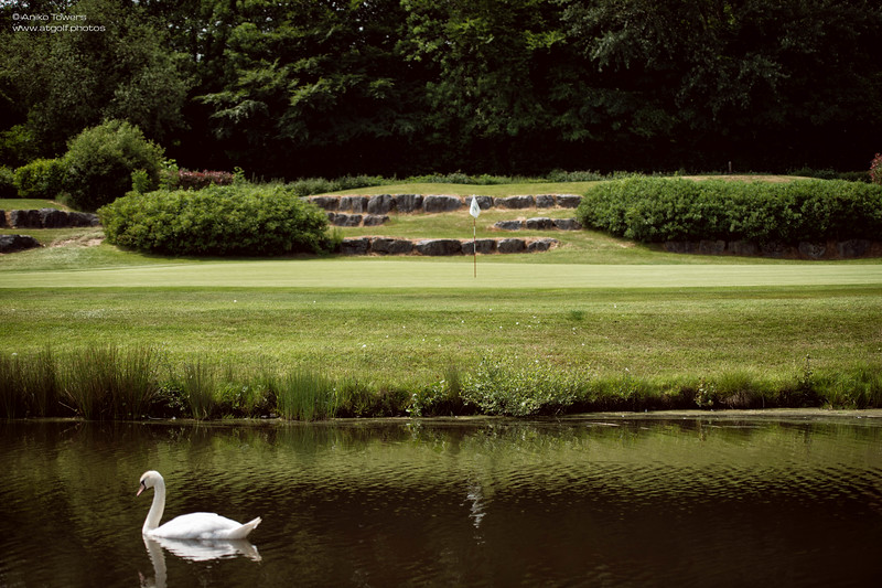 AT Golf Photos by Aniko Towers Vale Resort Golf Course Wales National-49.jpg