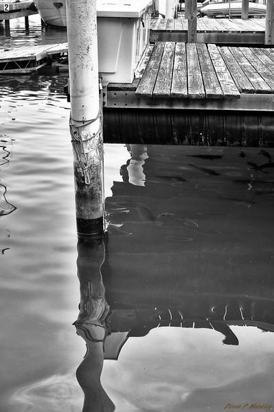 Wavey Reflection