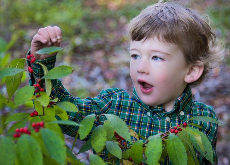 berries! crop (1 of 1).jpg