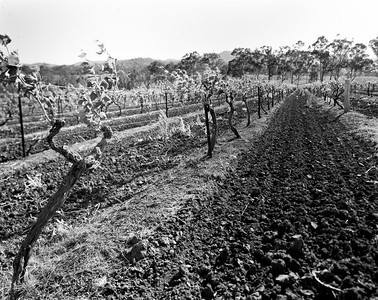 201210 Hunter Valley