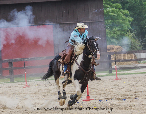 2014 New Hampshire Winners II